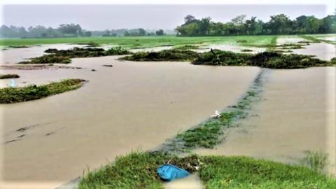 Sansai floods not abating2.png