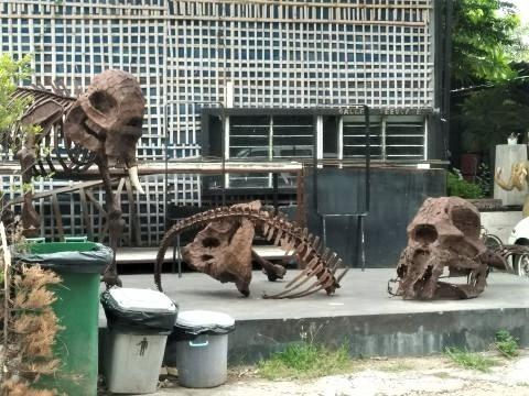 pict-1527575947890恐竜.jpg