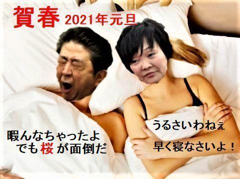 pict-1586747856933安倍首相夫妻.jpg