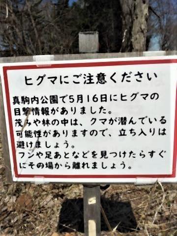 pict-1586833656081北海道 (1).jpg