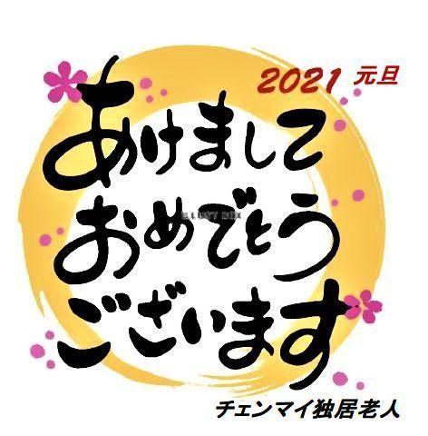 pict-1609445945313新年.jpg