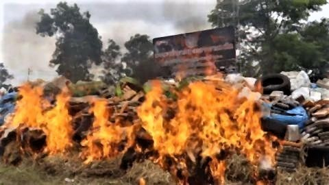 pict-8 tonnes of marijuana burned in Nakhon Phanom.jpg