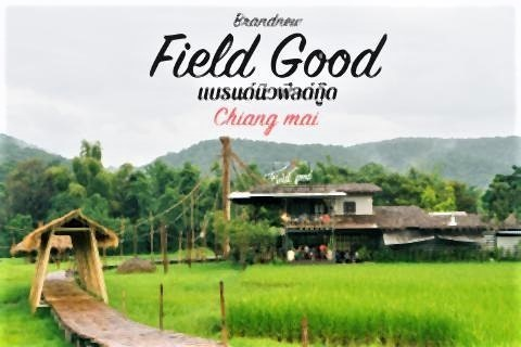 pict-Brandnew Field Good3.jpg