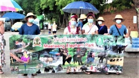 pict-Chiang Mai reaches out to tourists3.jpg