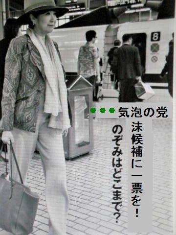pict-DSCN2088気泡の党.jpg