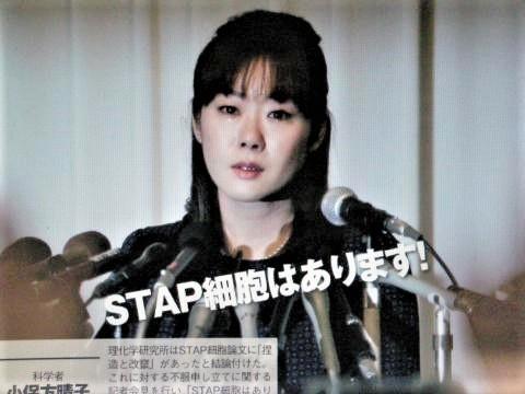 pict-DSCN2180小保方晴子.jpg