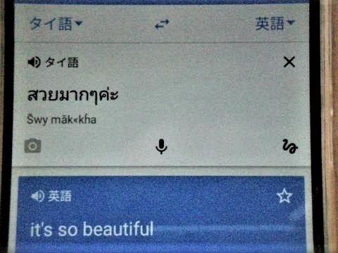 pict-DSCN3167グーグル翻訳.jpg
