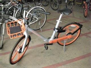 pict-DSCN3430レンタル自転車.jpg