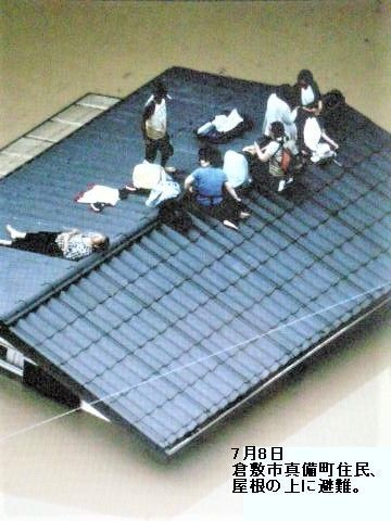 pict-DSCN4142屋根に避難.jpg