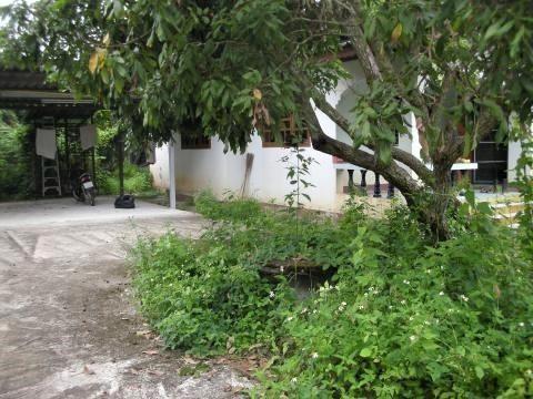 pict-DSCN4341轟宅引き揚げ前 (1).jpg