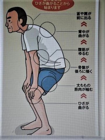 pict-DSCN4905筋肉体操 (2).jpg