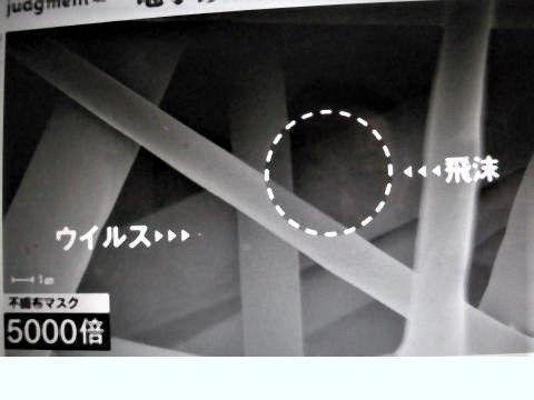 pict-DSCN7043アベノマスク (1).jpg