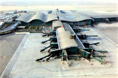 pict-Doha Hamad.jpg