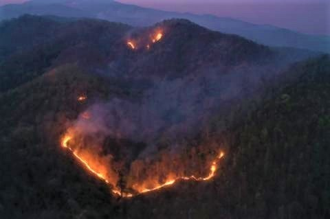 pict-Doi Suthep fire 3.jpg