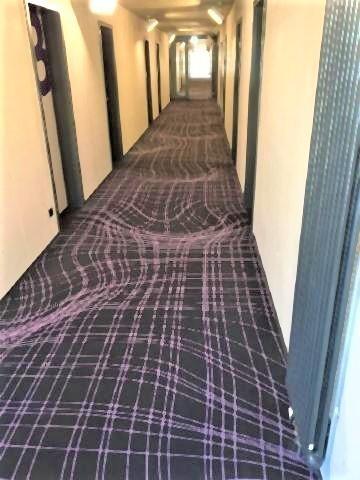 pict-ぐにゃぐにゃに見えるドイツ・ケルンのホテルのカーペット.jpg