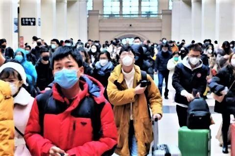 pict-コロナウイルスの感染源は.jpg