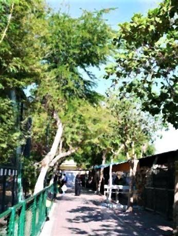 pict-ドバイ動物園「Dubai Zoo」。.jpg