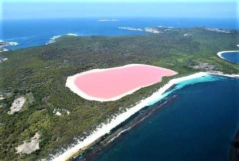 pict-ヒラー湖(オーストラリア).jpg