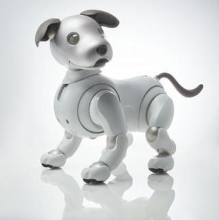 pict-ロボット犬.jpg