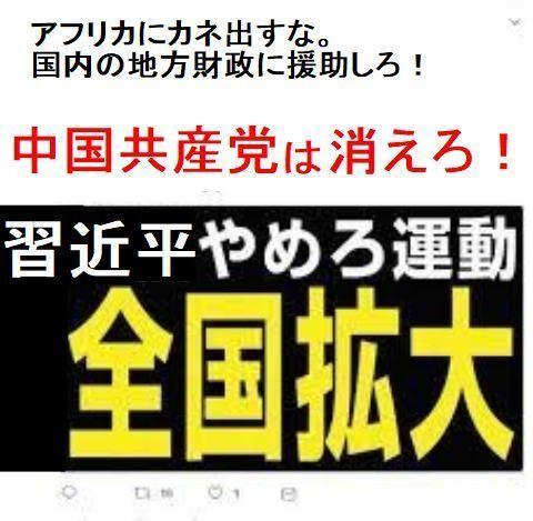 pict-安倍政権批判のデモ6.jpg