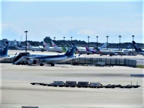 pict-成田国際空港3.jpg