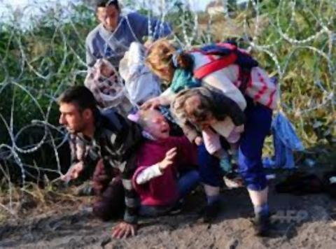 pict-有刺鉄線くぐってハンガリー入りする移民たち.jpg