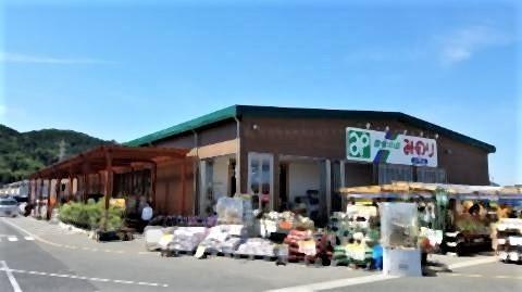 pict-栃木市大平町の被害.jpg