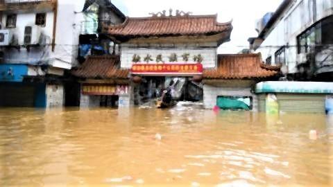 pict-浸水した融水ミャオ族自治県の市場(2020年7月11日撮影).jpg