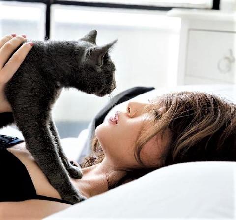 pict-猫と美女6.jpg