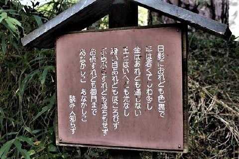 pict-珍宝(ちんぽう)神社5.jpg