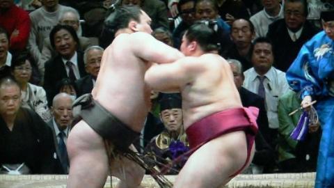 pict-白鵬vs遠藤2.jpg
