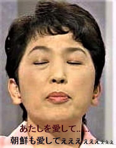 pict-福島瑞穂3.jpg
