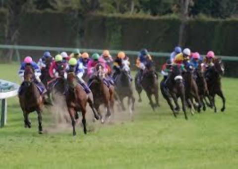 pict-競馬レースシーン.jpg
