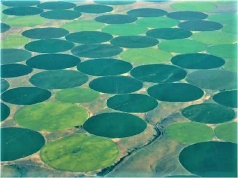 pict-緑の円形模様、アメリカ流の大規模潅漑農業.jpg