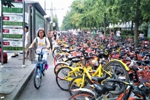pict-自転車を使ってる人が女性1人だけ.jpg