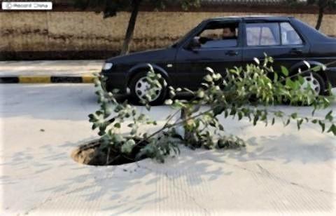 pict-西安市長安区のマンホールが一晩で全部盗まれ清掃員が安全の木の枝を差し.jpg