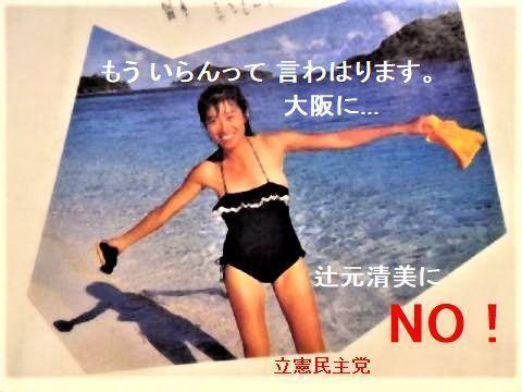 pict-辻元清美.jpg