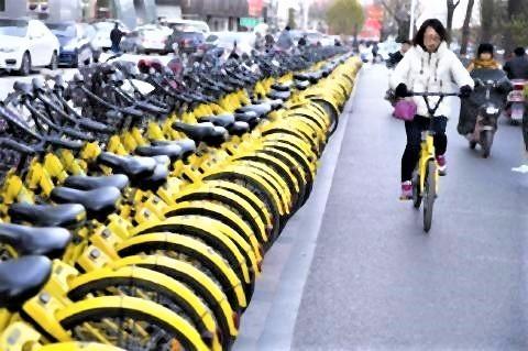 pict-通常の自転車は整然と並べられちゃんと使われている.jpg