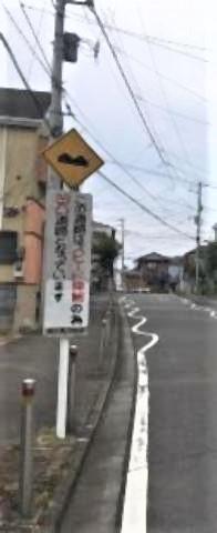 pict-道路の白線が「クネクネ.jpg