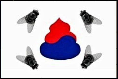 pict-韓国の国旗画像.jpg