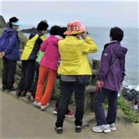 pict-韓国人旅行者4.jpg