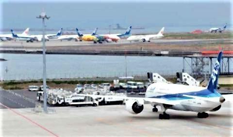 pict-駐機場に機体がずらり.jpg