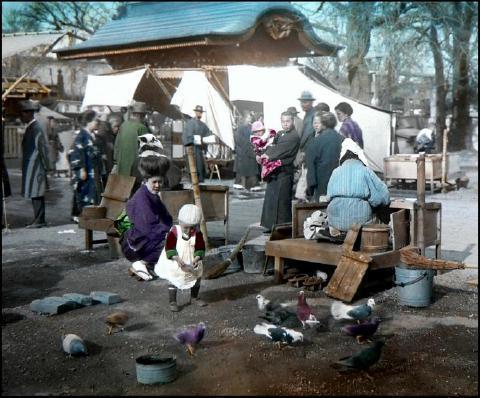 pict-鳩に餌をやる子供1890.jpg