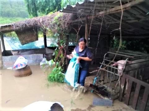 pict-Flash floods in Phrao2.jpg