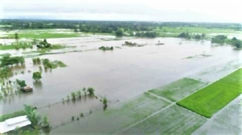 pict-Flooding in Khon Kaen PHOTO Daily News.jpg