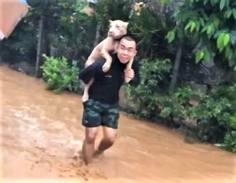 pict-Man Carries Dog on his Back to Rescue.jpg