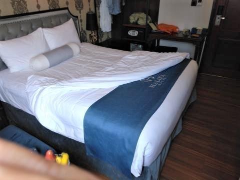 pict-P_20190407_142320Halina Hotel (2).jpg