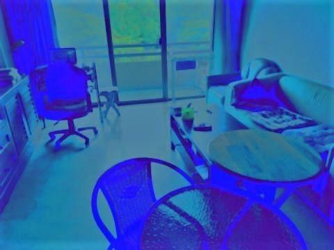 pict-P_20200428_082141_vHDR_On_1_1_1.jpg