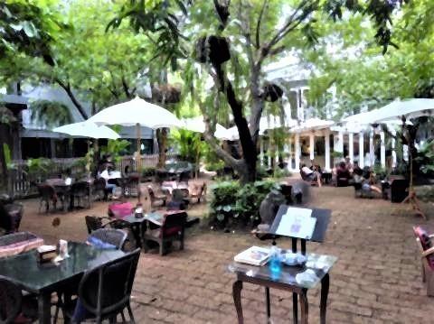 pict-P_20200713_145627_vHDR_On Fern forest cafe (2).jpg