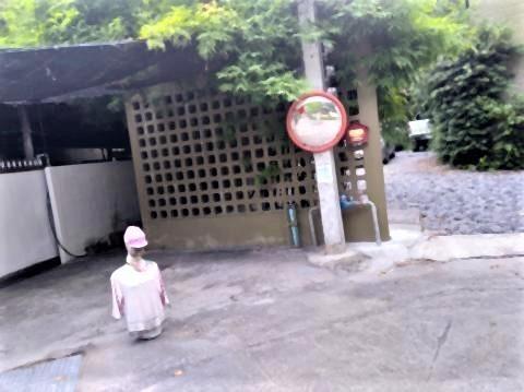pict-P_20210828_063711_vHDR_On人形の家 (4).jpg